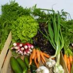 Panier de légumes bio AMAP Thiéfosse Vosges